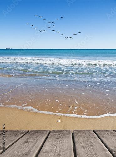Fotobehang Een Hoekje om te Dromen las gabiotas en la playa azul
