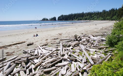Low tide on the Long Beach with driftwoods.  Vancouver Island, C