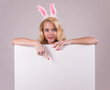 Bunny girl with blank banner on gray background.