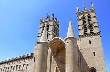 Cathédrale Saint Pierre - Montpellier