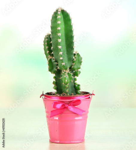 Foto op Canvas Cactus Beautiful cactus in bright pail on wooden table
