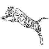 tiger attack tattoo vector