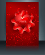 Beautiful card for valentine's day heart brochure reflection col