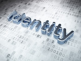 Protection concept: Silver Identity on digital background