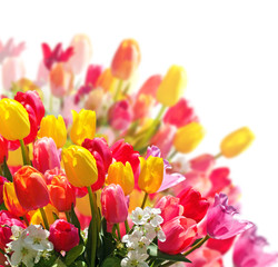 Alles Liebe: Bunter Blumenstrauß