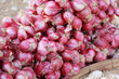 Shallot - asia red onion in market