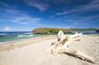 Leinwandbild Motiv Deserted beach