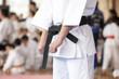 Karate - 61113241