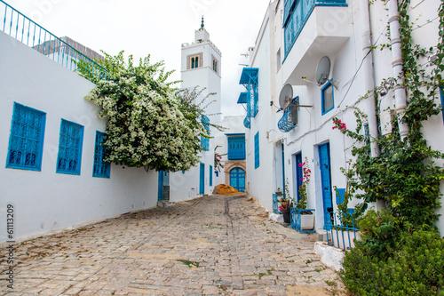 Foto op Aluminium Tunesië Mosque