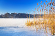 Winter scenery of frozen lake in Poland
