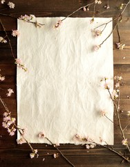 Cherry blossom on paper