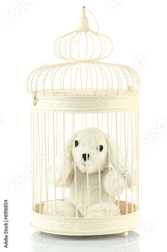 Toy rabbit in decorative cage, isolated on white