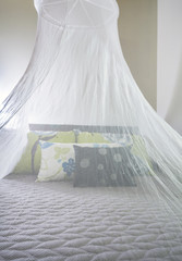 Mosquito netting over a bed