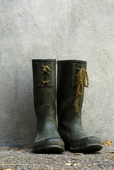 Old wellingtons