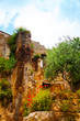 Ruins and flowers in Bagnoregio