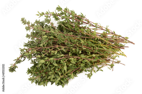 thyme on a white background