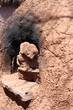 Traditional Horno Clay Oven in Bolivia, South America