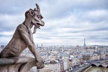 Blick auf Paris vom Notre Dame