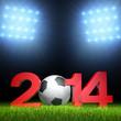 3D - Football - 2014 (V)