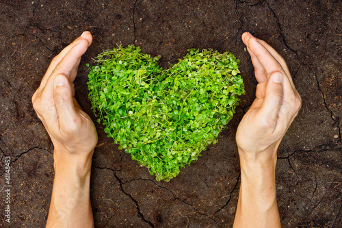 Papiers peints Arbre hands holding green heart shaped tree on crack earth