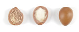 Argan nuts in a row on a white background.