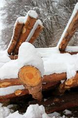 Mit Schnee bedeckter Holzstapel aus Baumstämmen