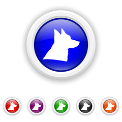 Dog icon - six colours set vector