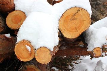 Mit Schnee bedeckte Holzstämme auf einem Stapel