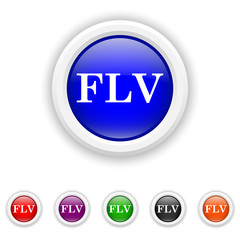 FLV icon - six colours set vector