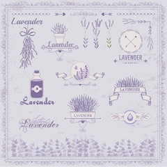 Lavender background, aromatherapy  label packaging design