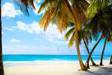 Sztuka piękna plaża morze nietknięty tropikalnych