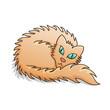 Red Fluffy Cat Vector Illustration
