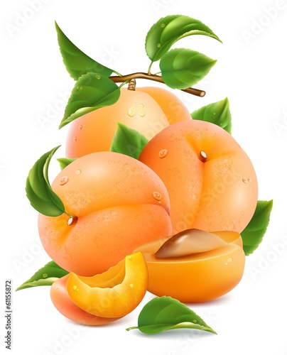 Apricots with green leaves and water drops.