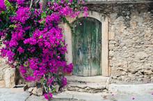 Stare drewniane drzwi i bugenwilli
