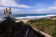 Jeffreys Bay Waves Landscape