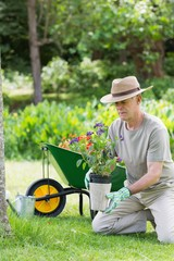 Mature man engaged in gardening
