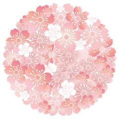 桜 春 さくら 花