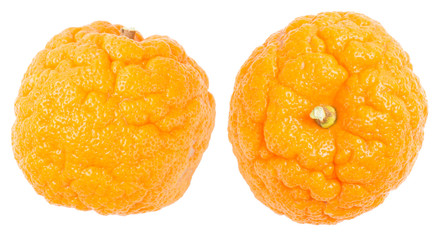 orange cellulite peel