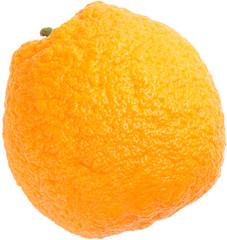 orange cellulite skin