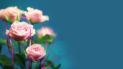 Pink rose with turquoise background