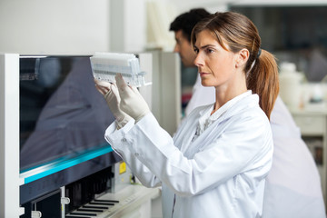Technician Analyzing Samples
