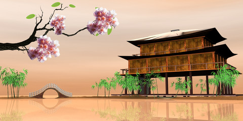 sakura with nice wood house