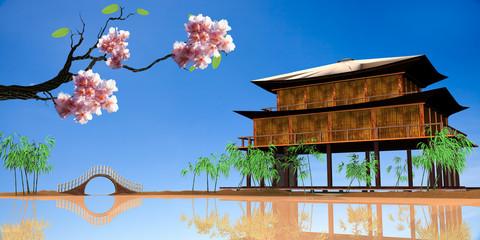 sakura with nice wood house