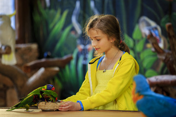 Trip to the Zoo - girl feeds a parrots at the Zoo