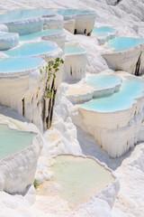 Trawertyn w basenach starożytnego Hierapolis, teraz Pamukkale, Turcja
