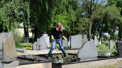 daughter plant begonia flowers on father grave in cemetery