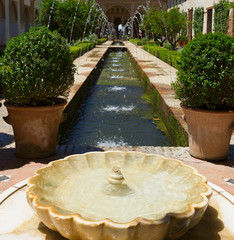 Generalife gardens, Granada,