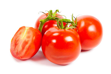 Closeup of tomatoes on the vine isolated on white. Tomato branch