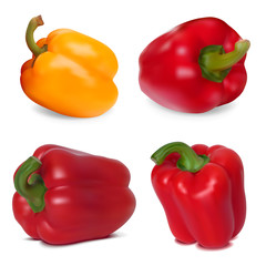Photo-realistic vector. Set of Sweet Peppers