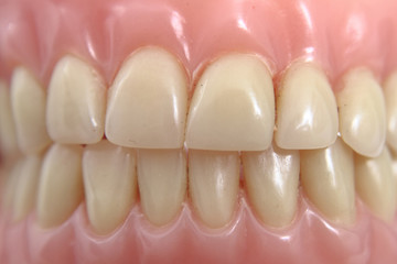 teeth prosthesis background